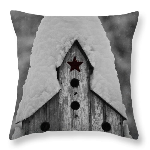 Snow Throw Pillow featuring the photograph Snow Covered Birdhouse by Teresa Mucha