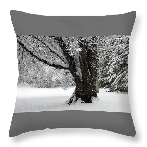 Snow Throw Pillow featuring the photograph Snow Day by Joni Moseng