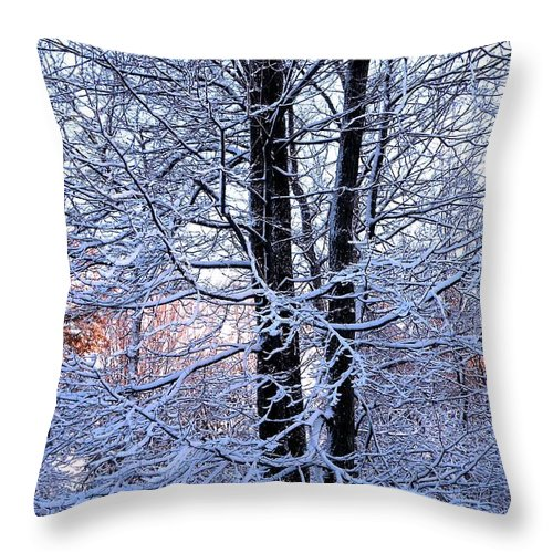Tree Throw Pillow featuring the photograph Snow Maple Morning Landscape by Dave Martsolf