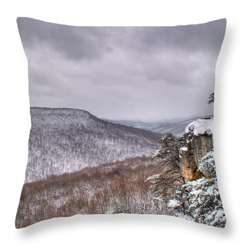Snow Throw Pillow featuring the photograph Snow Remoteness by Douglas Barnett
