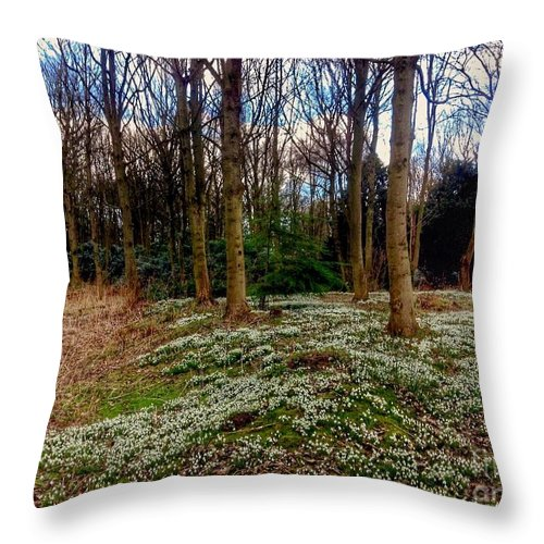 Snowdrops Throw Pillow featuring the photograph Snowdrop Woods 2 by Joan-Violet Stretch