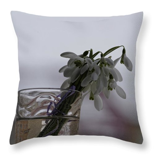 Arrangement Throw Pillow featuring the photograph Snowdrops Bouquet In The Glass by Adrian Bud