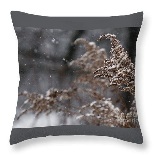Winter Throw Pillow featuring the photograph Snowfall by Linda Shafer