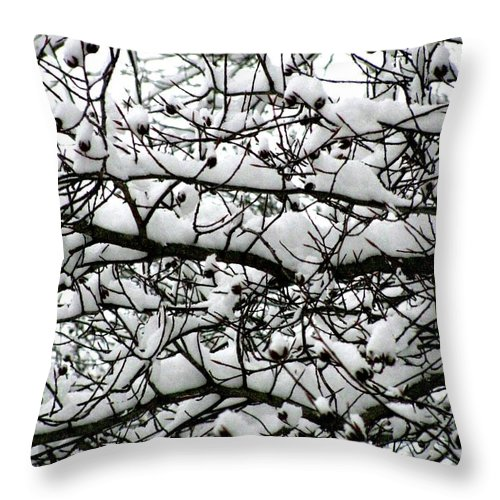 Foliage Throw Pillow featuring the photograph Snowfall On Branches by Deborah Crew-Johnson