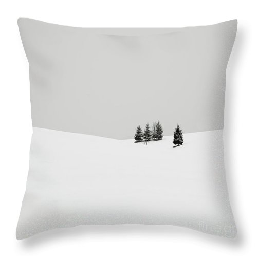 Contemporary Throw Pillow featuring the photograph Snowscapes  Almost There by Ronny Behnert