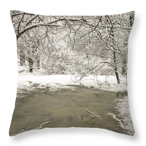 Ohio Throw Pillow featuring the photograph Snowy Day by Amanda Kiplinger