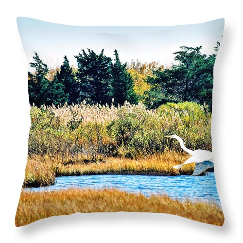 Landscape Throw Pillow featuring the photograph Snowy Egret-island Beach State Park N.j. by Steve Karol