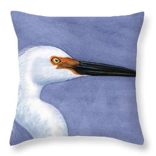 Snowy Throw Pillow featuring the painting Snowy Egret Portrait by Charles Harden