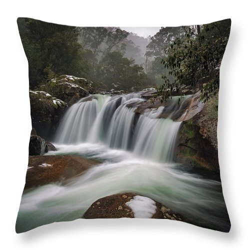 Alpine Throw Pillow featuring the photograph Snowy Mist by Mark Lucey