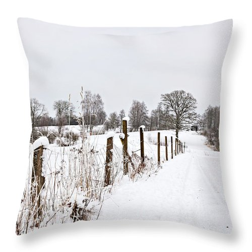 Tree Throw Pillow featuring the photograph Snowy Rural Landscape by Sophie McAulay