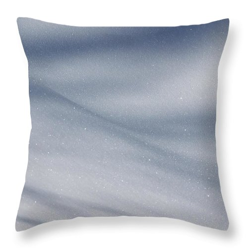 Snow Throw Pillow featuring the photograph Snowy Shadows 2 by Lauri Novak