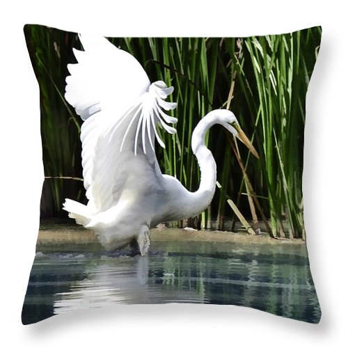 Egret Bird Water+fowl Heron Marsh Wetland Water Cattails Rushes Vegetation Reflection Throw Pillow featuring the painting Snowy White Egret In The Wetlands by Elaine Plesser