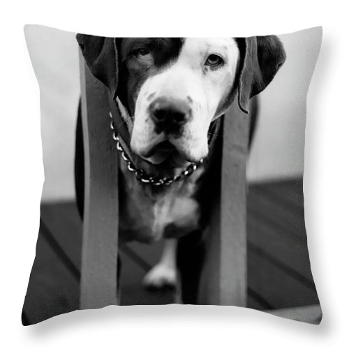 Black And White Throw Pillow featuring the photograph So Sad by Peter Piatt