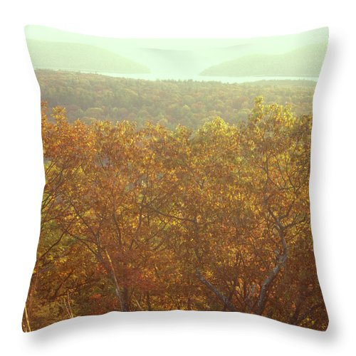 Forest Throw Pillow featuring the photograph Soapstone Hill Oak Foliage by John Burk
