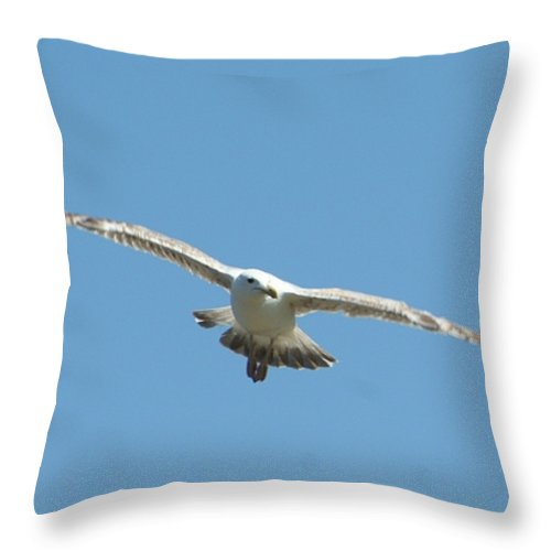Gift Throw Pillow featuring the photograph Soaring by Barbara S Nickerson
