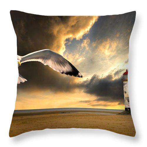 Gull Throw Pillow featuring the photograph Soaring Inshore by Meirion Matthias