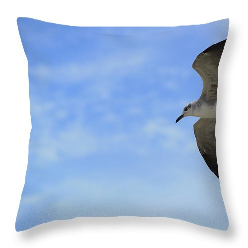 Flight Throw Pillow featuring the photograph Soaring by Kenneth Albin