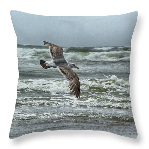 Beach Throw Pillow featuring the photograph Soaring On Long Island by Marie Leslie
