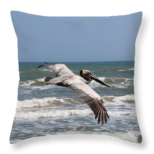 Wild Pelican Throw Pillow featuring the photograph Soaring Pelican by Christy Pooschke