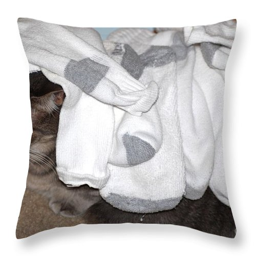 Socks Throw Pillow featuring the photograph Sock It To Me by Donna Bentley