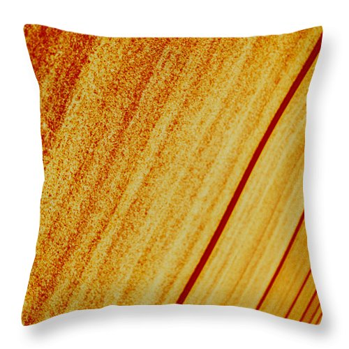 Abstract Throw Pillow featuring the photograph Sod by David Rivas