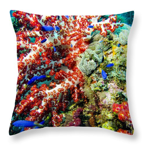 Coral Throw Pillow featuring the photograph Soft Coral In Truk by Dan Norton