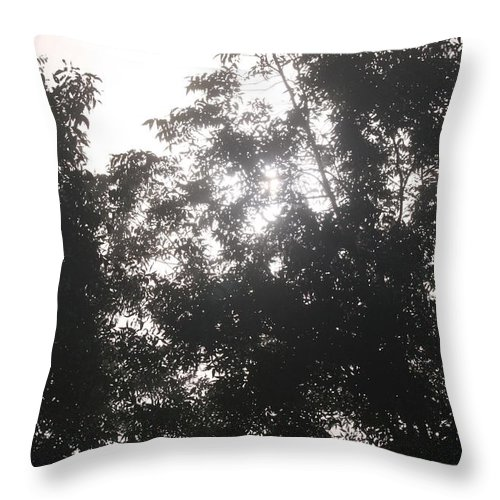 Light Throw Pillow featuring the photograph Soft Light by Nadine Rippelmeyer