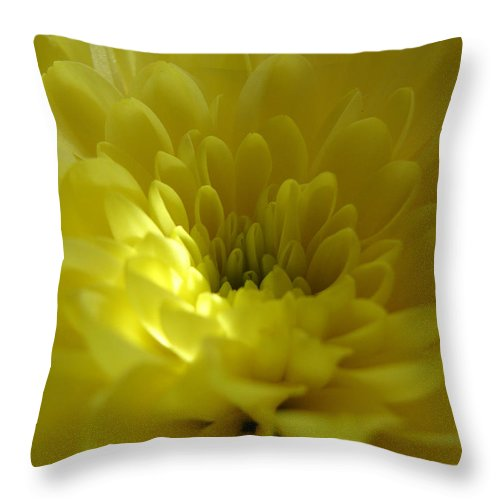 Throw Pillow featuring the photograph Soft by Luciana Seymour