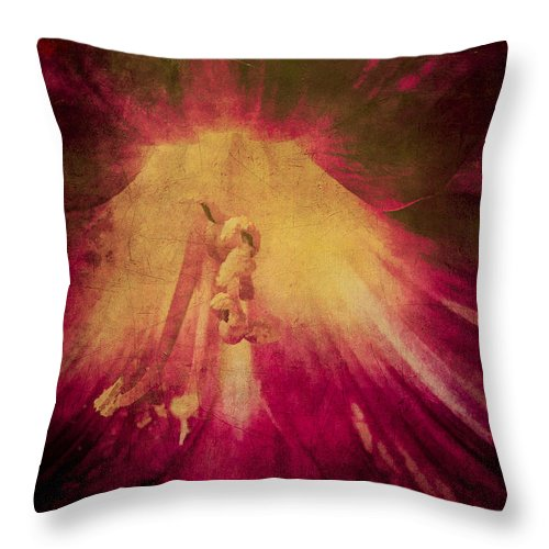 Daylily Throw Pillow featuring the photograph Soft Muted Impresionistic Distressed Daylily Photo by Gene Camarco