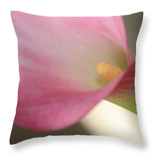 Pink Throw Pillow featuring the photograph Soft Pink Calla Lily by Carol Groenen