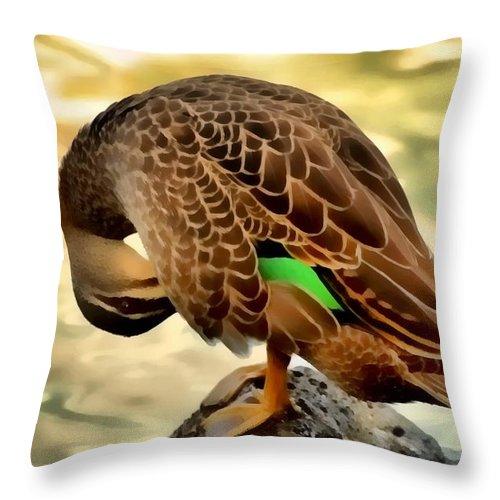 Duck Throw Pillow featuring the photograph Soft Sunset Preen by Georgiana Romanovna