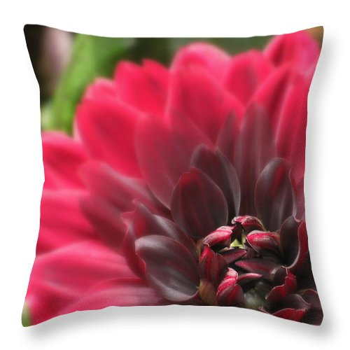 Flowers Throw Pillow featuring the photograph Soft Whisper by Deborah Crew-Johnson