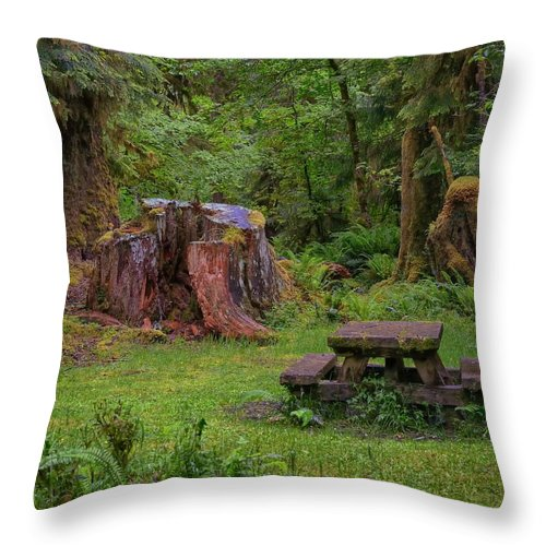 Hoh Rainforest Throw Pillow featuring the photograph Soggy Picnic by Philip Kuntz