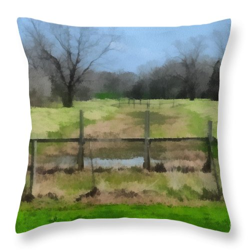 Corporate Throw Pillow featuring the photograph Soggy Texas Bayou by Paulette B Wright