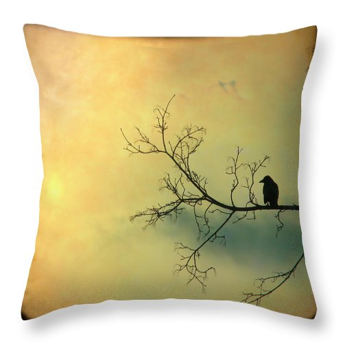Through The Viewfinder Throw Pillow featuring the photograph Solitude Mood by Gothicrow Images