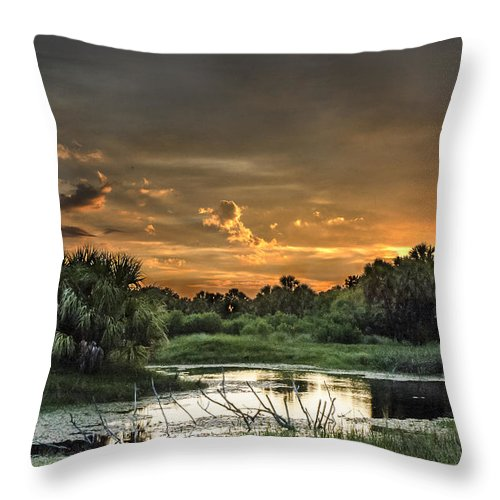 Sunset Throw Pillow featuring the photograph Solitude by Norman Johnson
