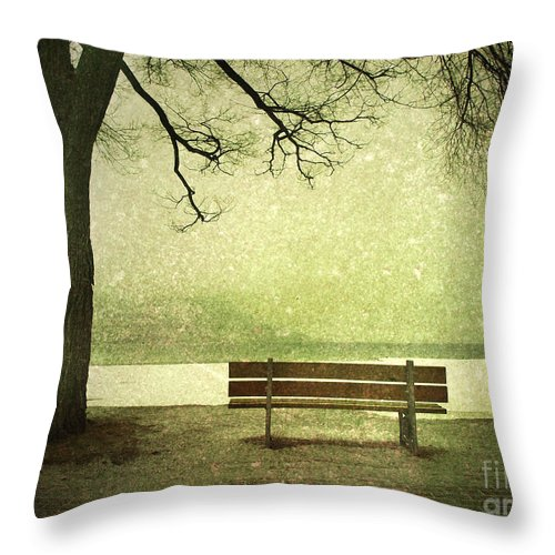 Bench Throw Pillow featuring the photograph Solitude by Tara Turner