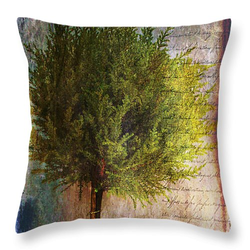 Tree Throw Pillow featuring the photograph Something About Saint Laurent by Nina Silver