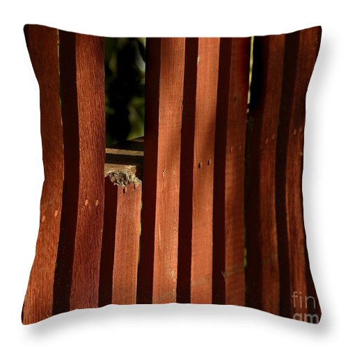 California Scenes Throw Pillow featuring the photograph Somethin's Missing by Norman Andrus