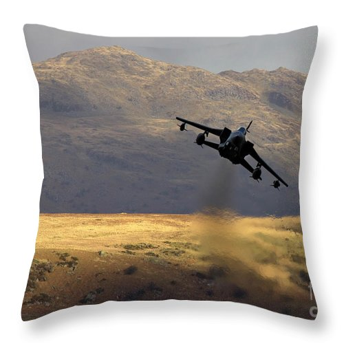 Great Britain Throw Pillow featuring the photograph Somewhere In Wales by Angel Ciesniarska