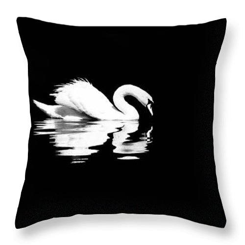Swan Throw Pillow featuring the photograph Song Of Songs I by Deb Cohen