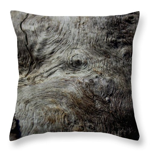 Macro Throw Pillow featuring the photograph Songlines Series by Sonja Czekalski