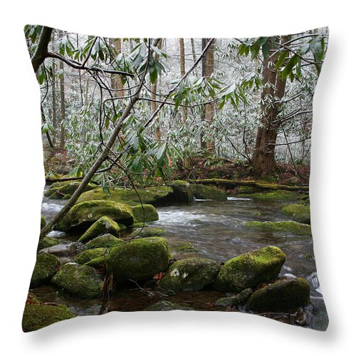 River Stream Creek Water Nature Rock Rocks Tree Trees Winter Snow Peaceful White Green Flowing Flow Throw Pillow featuring the photograph Soothing by Andrei Shliakhau