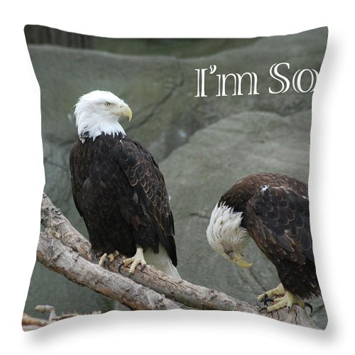 Eagles Throw Pillow featuring the photograph Sorry by Michael Peychich