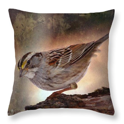 Sparrow Throw Pillow featuring the photograph Soul Catcher...  by Arthur Miller
