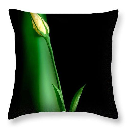 Flower Throw Pillow featuring the photograph Soul Mates by Tom Mc Nemar