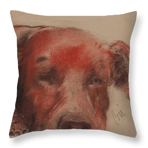 Pastel Throw Pillow featuring the drawing Soul Searcher by Cori Solomon