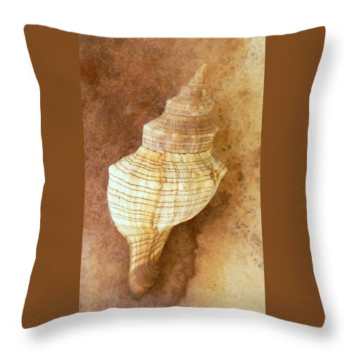 Still Life Throw Pillow featuring the photograph Sounds Of The Sea by Holly Kempe