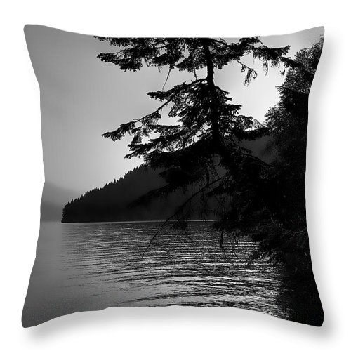Boathouse Throw Pillow featuring the photograph South Beach View by David Patterson
