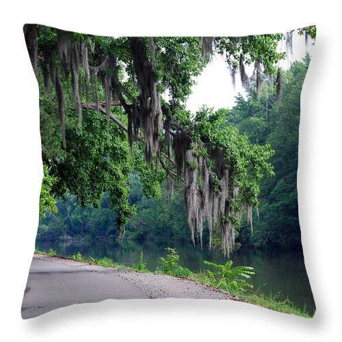 Scenic Tours Throw Pillow featuring the photograph Southern Freeway by Skip Willits